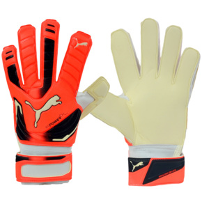 Rękawice bramkarskie Puma Evo Power Grip 2 RC 040998 30