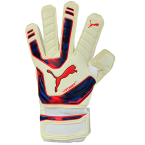 Rękawice bramkarskie Puma Evo Power Grip 2 RC 040998 15